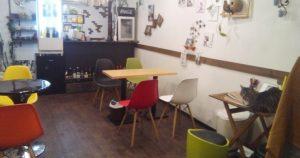 猫が居るカフェ CAFE&BAR PATIO