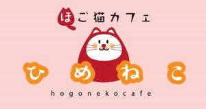 保護猫カフェ ひめねこ